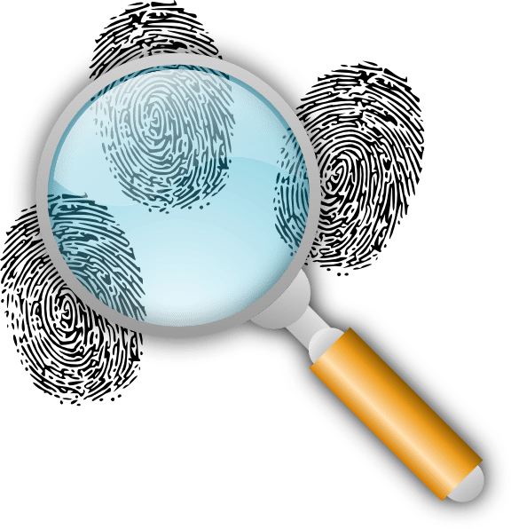 the role of criminal investigation in forensic science essay Criminal investigations ch 1 notes goals of criminal investigation  forensic evidence and crime scene essay  i graduated with a masters in forensic science.
